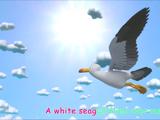 Seagull (CoCoMelon)