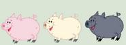 MLP FIM Pigs