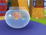 Fish (WordWorld)