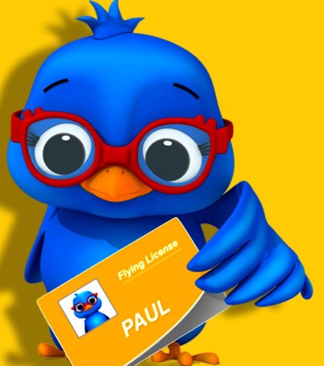 Paul (bird)