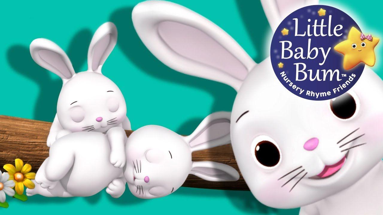 LBB Bunnies