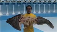 Oompa Loompa Fish
