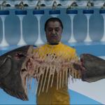 Oompa Loompa Fish.png