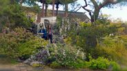 Gardens of Latebra