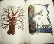 FamilyTree-in-the-Book-of-Shadows-1