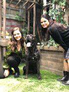 2x5 Jeffery, Diaz and dog