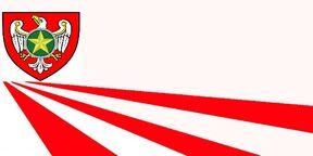 "Флаг движения ""молот белого орла"".jpg"