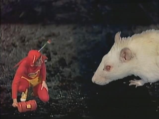 Criando Caso/Ratos e Ratoeiras