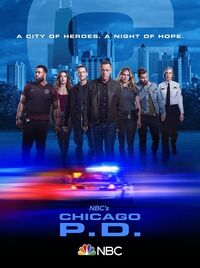 ChicagoPDPoster7.jpg