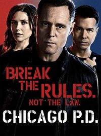 ChicagoPDPoster2.jpg