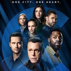 Chicago P.D. (Season 9)
