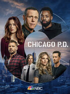 Chicago PD - Season 8 - Poster 1