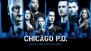 Chicago PD - Season 6 - Poster (1)