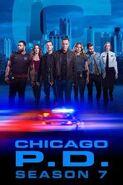 Chicago PD - Season 7 - Poster 1
