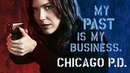 Chicago PD Season 1 Poster 5