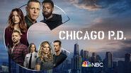 Chicago PD - Season 8 - Poster 2