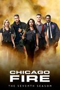 Chicago Fire (2012) - Season 7