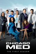 Chicago Med (2015) - Season 1