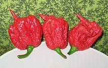 Carolina Reaper pepper pods.jpg