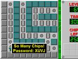 So Many Chips!
