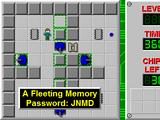 A Fleeting Memory