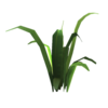 Feedgrass.png