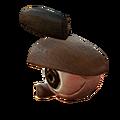 Horse eye.png