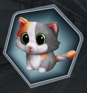 Possessed Cat Toy
