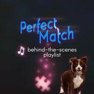 PerfectMatchBTSplaylistcover