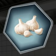 Garlic clove whole