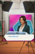 WildcardPartInfoPartI
