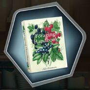 Trh eleanor foraging handbook