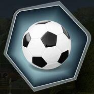 Trr3 soccer ball