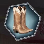 Cowboy cowgirl boots tan brown
