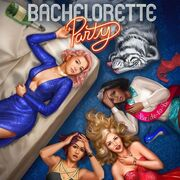 Bachelorette Party Cover 2.jpg