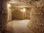 FullviewofParisCatacombs