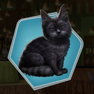 SB Ch14 Black Cat