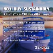 Rising Tides Eco-Friendly Ideas