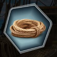 Ds rope coil