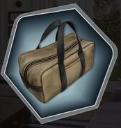 Sunkissed Ch 6 Samson's Luggage Bag