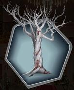 BB 2 Gaius Tree Ch 16