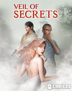 Veils of Secrets Cover