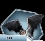 LHBk2Ch15 Bat.png