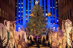 Rockefeller-Center-Christmas-Tree-2017-billboard-1548.jpg