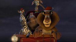 MadagascarXmas.jpg