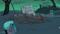 Flip's grave