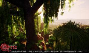 Pre-Alpha Tropical Wetland (freshwater) biome - 5.jpg