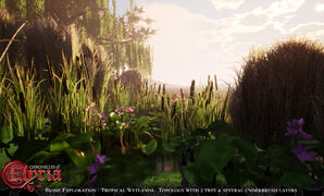 Pre-Alpha Tropical Wetland (freshwater) biome - 9.jpg