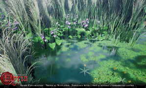 Pre-Alpha Tropical Wetland (freshwater) biome - 7.jpg
