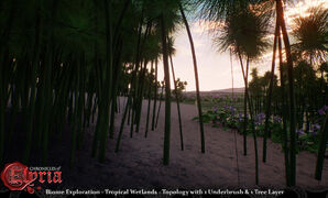 Tropical-wetlands-prealpha-1.jpg